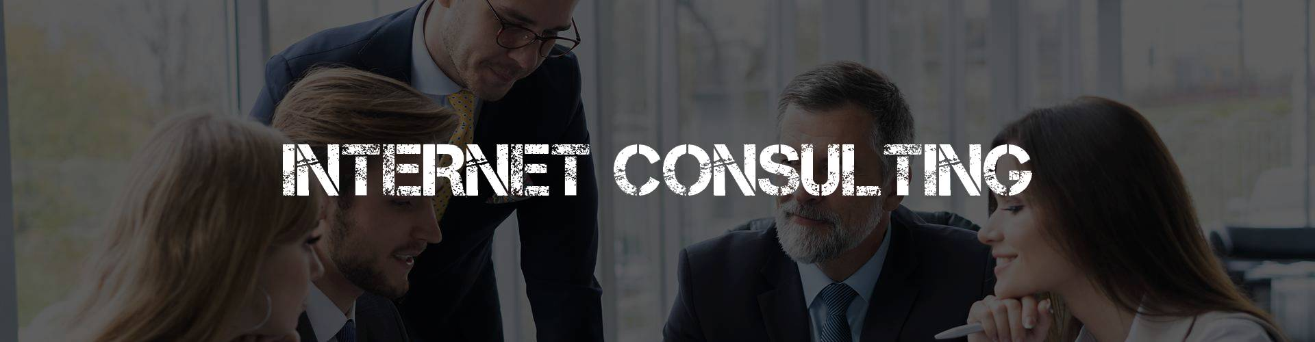 internet-beratung-consulting-hannover